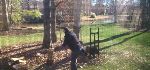 O Herman a cortar lenha. Herman aan het houthakken.