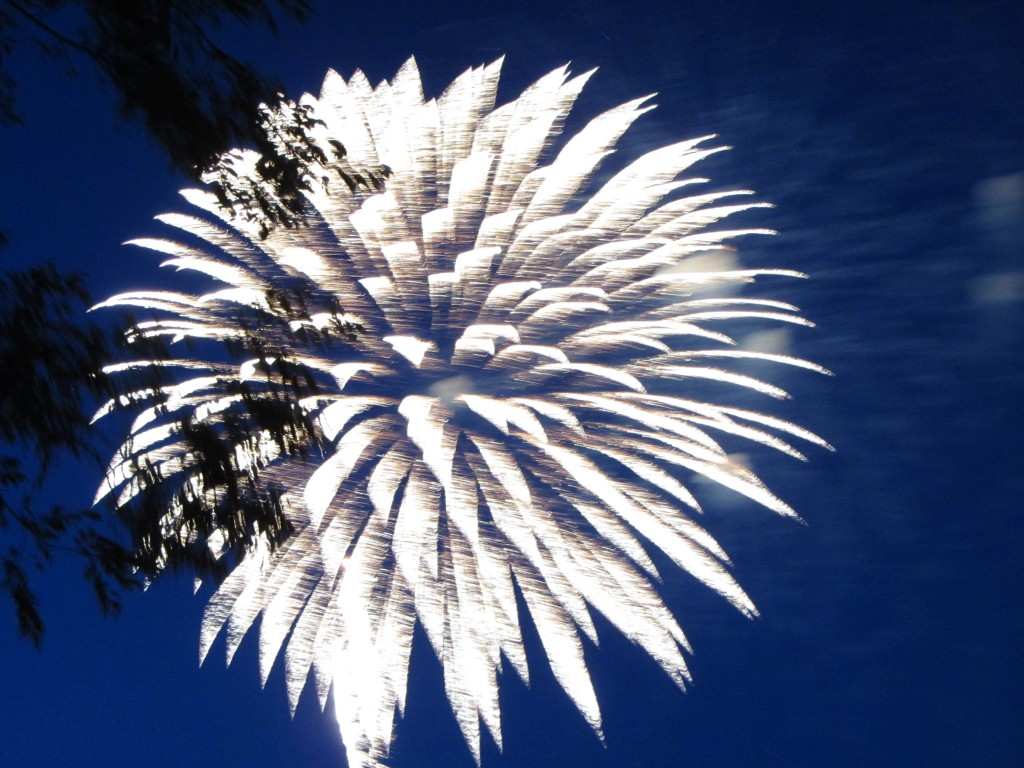 Fogo de artifício / Vuurwerk